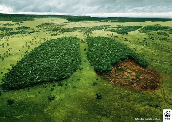 Anuncios con tema medioambiental