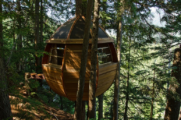 La casa del rbol escondida en los bosques de canad - Como construir una casa en un arbol ...