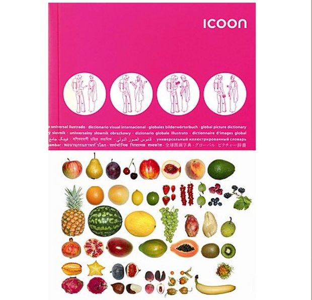 Icoon, un diccionario visual para entenderse en cualquier país