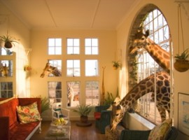 Giraffe Manor, alojarse entre jirafas