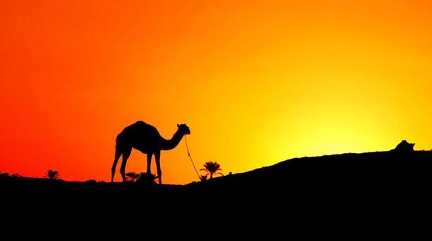 puesta-sol-en-desierto