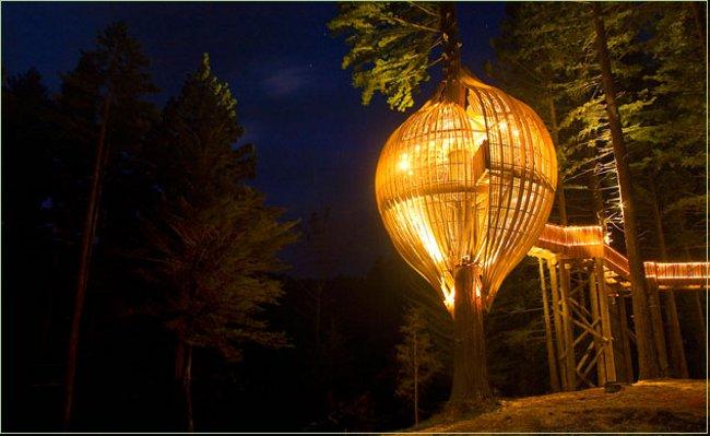 Redwoods-Treehouse-restaurante-alto-arbol