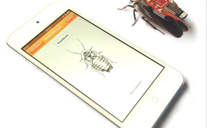 Polemica cucarachas teledirigidas desde iPhone2