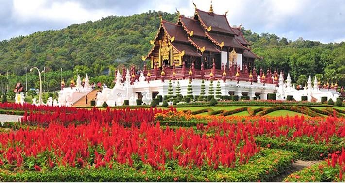 Chiang Mai Rosa Norte