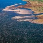 Lago Nakuru paraiso aves 2