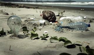 plastico-oceano.jpg