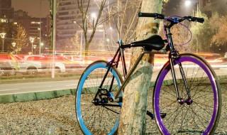 Bicicleta a prueba de ladrones