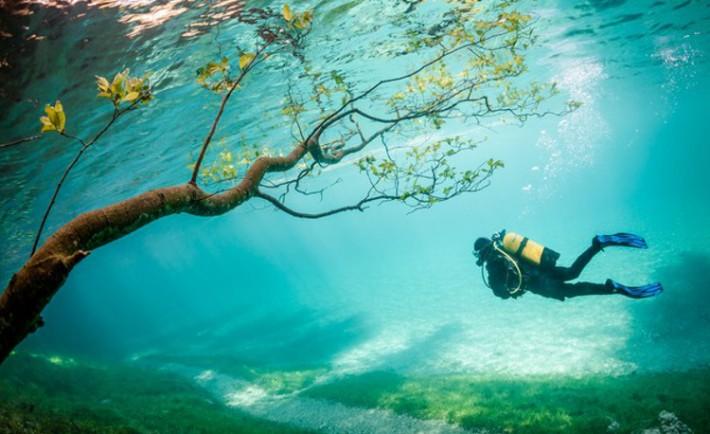 Impresionantes fotos ganadoras concurso National Geographic 2