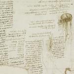 Cómo era lista tareas pendientes Leonardo da Vinci2