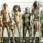 Prehistoria habitada cuatro especies humanos