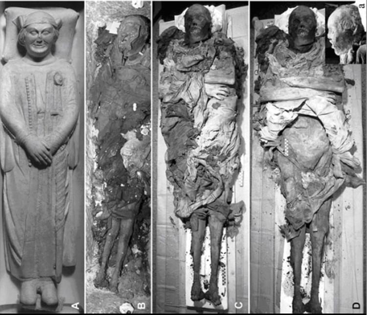 Heces momificadas desvelan un asesinato histórico
