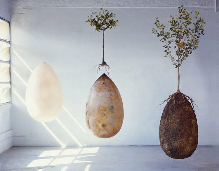 La fascinante y ecológica propuesta de sepultura de Capsula Mundi